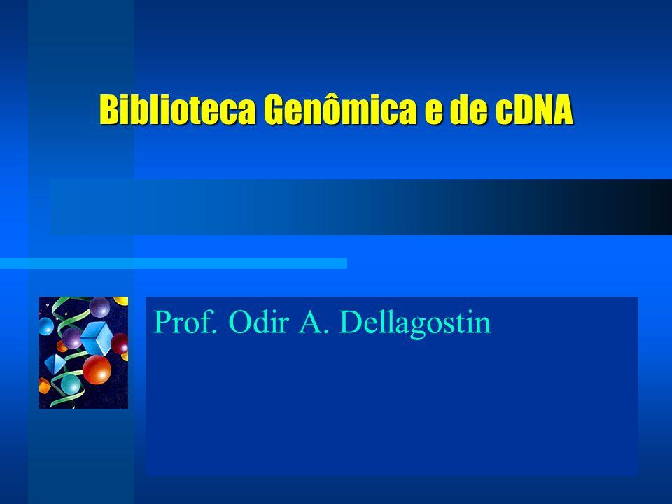 Prof. Odir A. Dellagostin Biblioteca Genômica e de cDNA