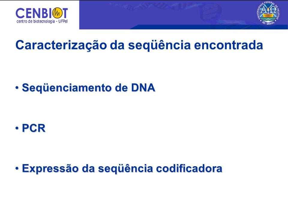Caracterização da seqüência encontrada Seqüenciamento de DNA Seqüenciamento de DNA PCR PCR Expressão da seqüência codificadora Expressão da seqüência codificadora