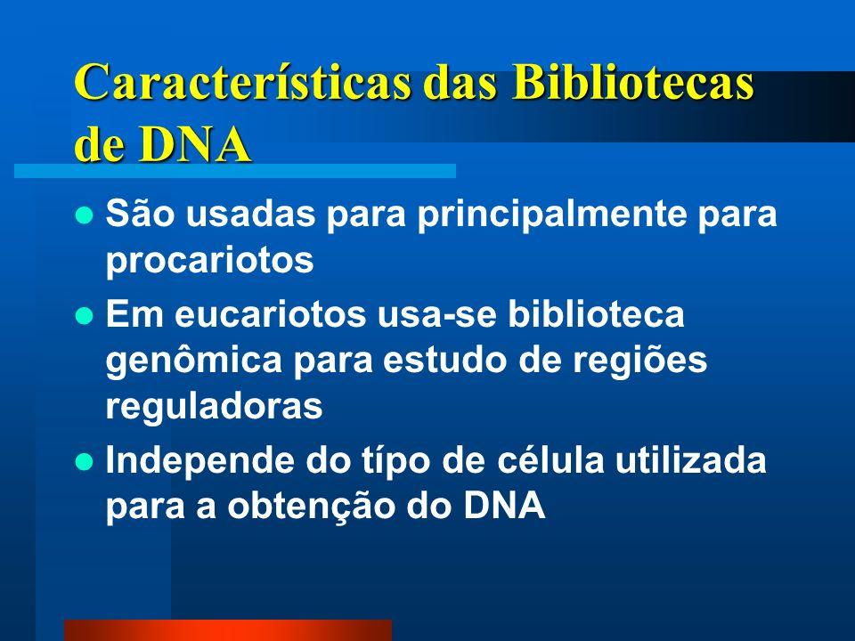 Características das Bibliotecas de DNA São usadas para principalmente para procariotos Em eucariotos usa-se biblioteca genômica para estudo de regiões reguladoras Independe do típo de célula utilizada para a obtenção do DNA