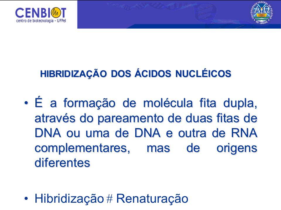 Triagem de Bibliotecas Genômicas Diagnóstico molecular Tipagem molecular Teste de paternidade Medicina forense Aplicações
