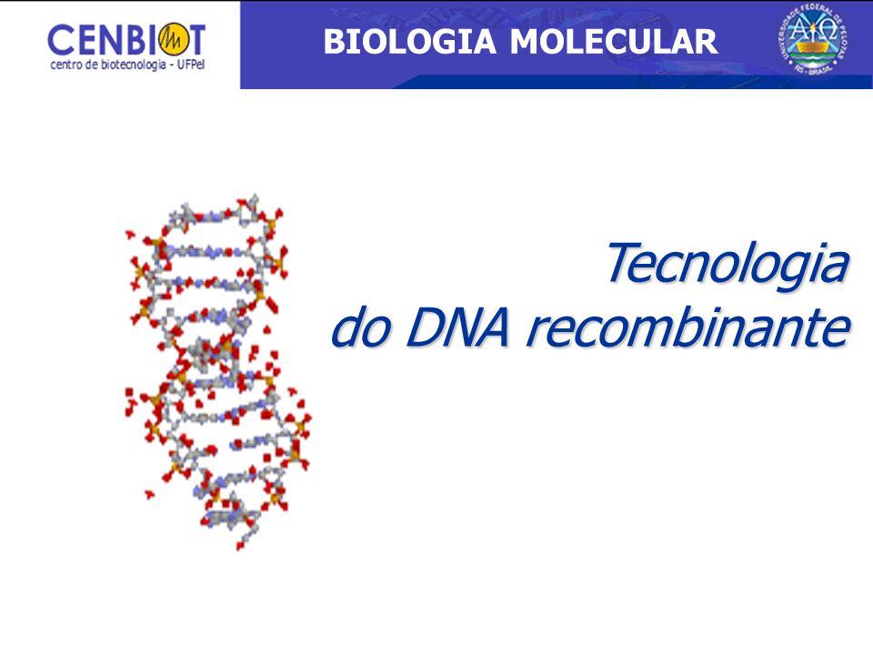 Tecnologia do DNA recombinante BIOLOGIA MOLECULAR