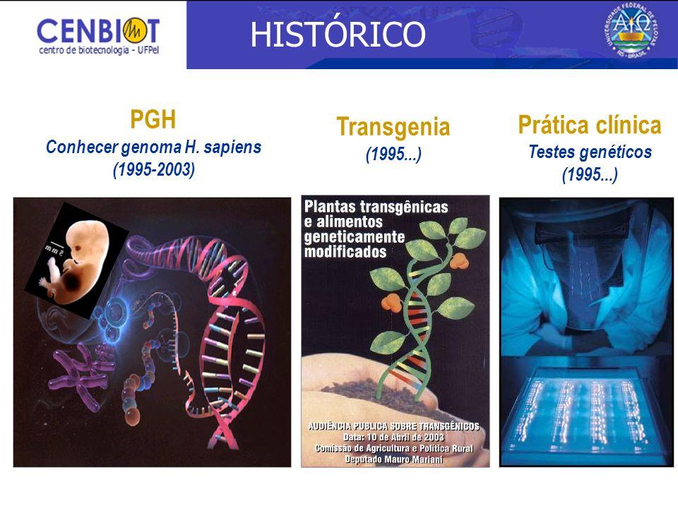HISTÓRICO Prática clínica Testes genéticos (1995...) PGH Conhecer genoma H. sapiens (1995-2003) Transgenia (1995...)