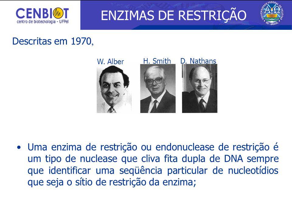 W. Alber H. SmithD. Nathans Uma enzima de restrição ou endonuclease de restrição é um tipo de nuclease que cliva fita dupla de DNA sempre que identifi
