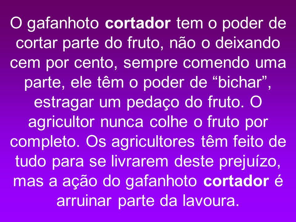 O gafanhoto cortador tem o poder de cortar parte do fruto, não o deixando cem por cento, sempre comendo uma parte, ele têm o poder de bichar, estragar um pedaço do fruto.