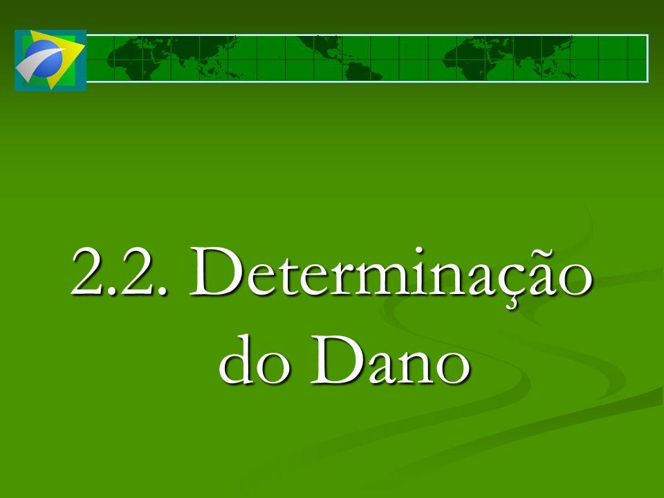 2.2. Determinação do Dano