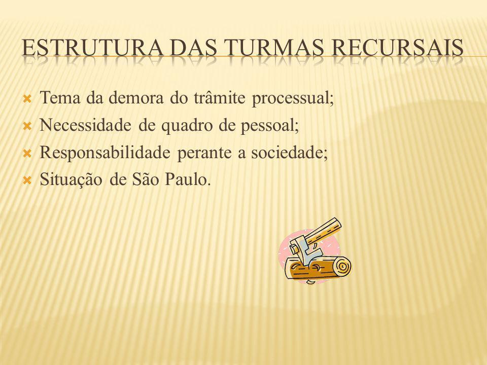 Tema da demora do trâmite processual; Necessidade de quadro de pessoal; Responsabilidade perante a sociedade; Situação de São Paulo.