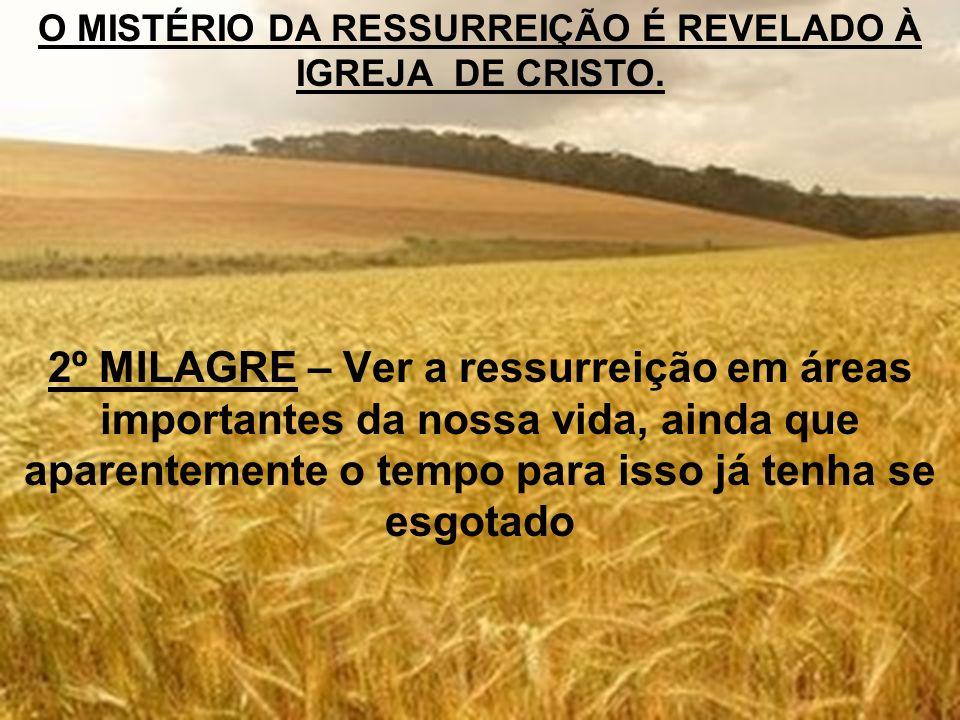 O MISTÉRIO DA RESSURREIÇÃO É REVELADO À IGREJA DE CRISTO. 2º MILAGRE – Ver a ressurreição em áreas importantes da nossa vida, ainda que aparentemente
