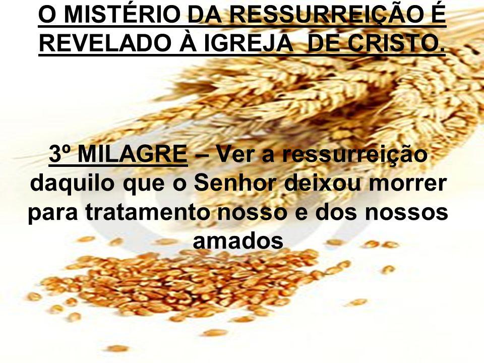 3º MILAGRE – Ver a ressurreição daquilo que o Senhor deixou morrer para tratamento nosso e dos nossos amados O MISTÉRIO DA RESSURREIÇÃO É REVELADO À I