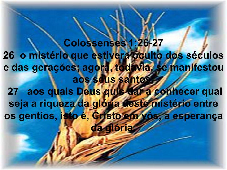 Colossenses 1:26-27 26 o mistério que estivera oculto dos séculos e das gerações; agora, todavia, se manifestou aos seus santos; 27 aos quais Deus qui