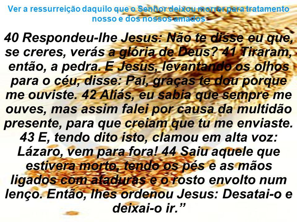 40 Respondeu-lhe Jesus: Não te disse eu que, se creres, verás a glória de Deus? 41 Tiraram, então, a pedra. E Jesus, levantando os olhos para o céu, d