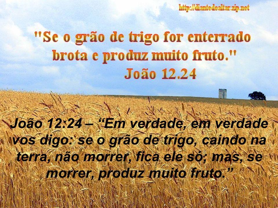 João 12:24 – Em verdade, em verdade vos digo: se o grão de trigo, caindo na terra, não morrer, fica ele só; mas, se morrer, produz muito fruto.