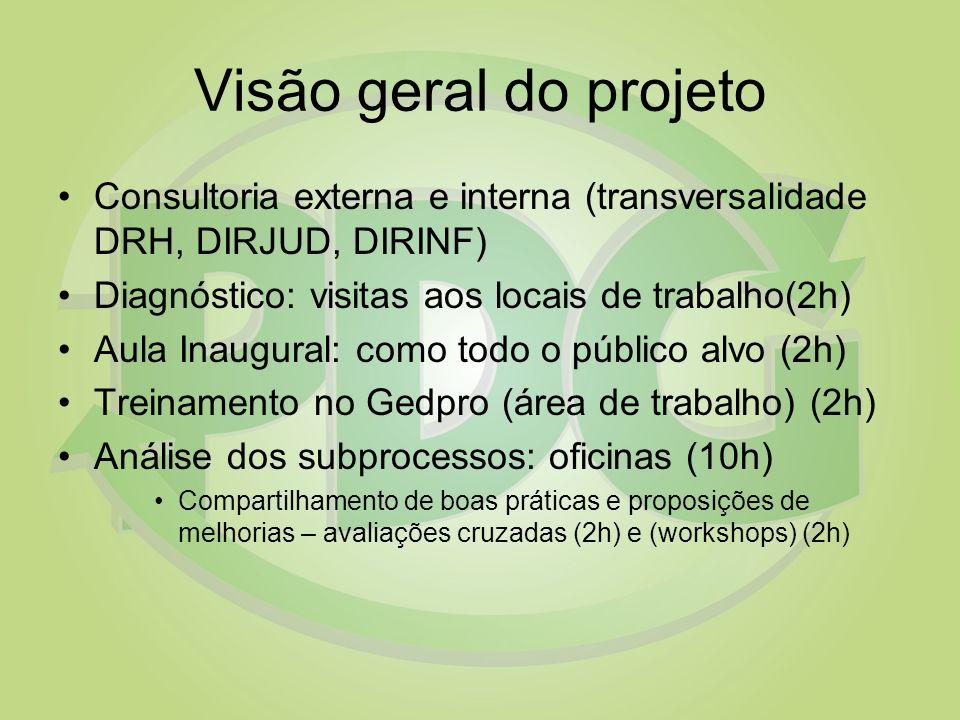 Visão geral do projeto Consultoria externa e interna (transversalidade DRH, DIRJUD, DIRINF) Diagnóstico: visitas aos locais de trabalho(2h) Aula Inaug