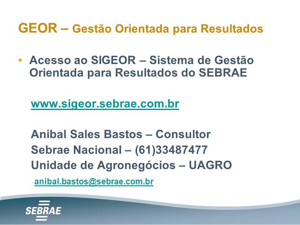 Acesso ao SIGEOR – Sistema de Gestão Orientada para Resultados do SEBRAE www.sigeor.sebrae.com.br Anibal Sales Bastos – Consultor Sebrae Nacional – (61)33487477 Unidade de Agronegócios – UAGRO anibal.bastos@sebrae.com.br