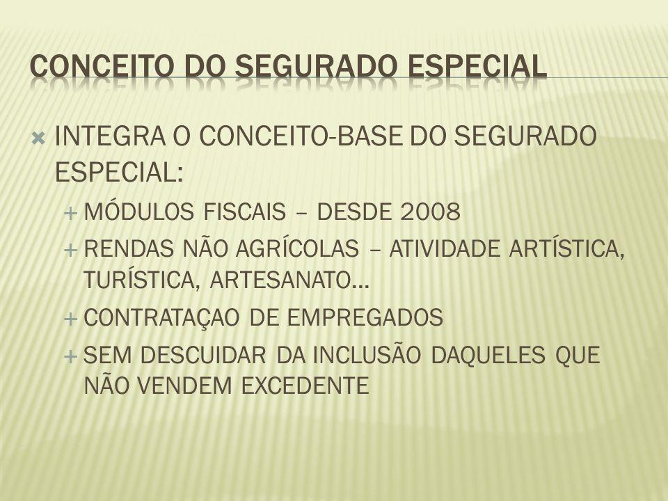 INTEGRA O CONCEITO-BASE DO SEGURADO ESPECIAL: MÓDULOS FISCAIS – DESDE 2008 RENDAS NÃO AGRÍCOLAS – ATIVIDADE ARTÍSTICA, TURÍSTICA, ARTESANATO... CONTRA