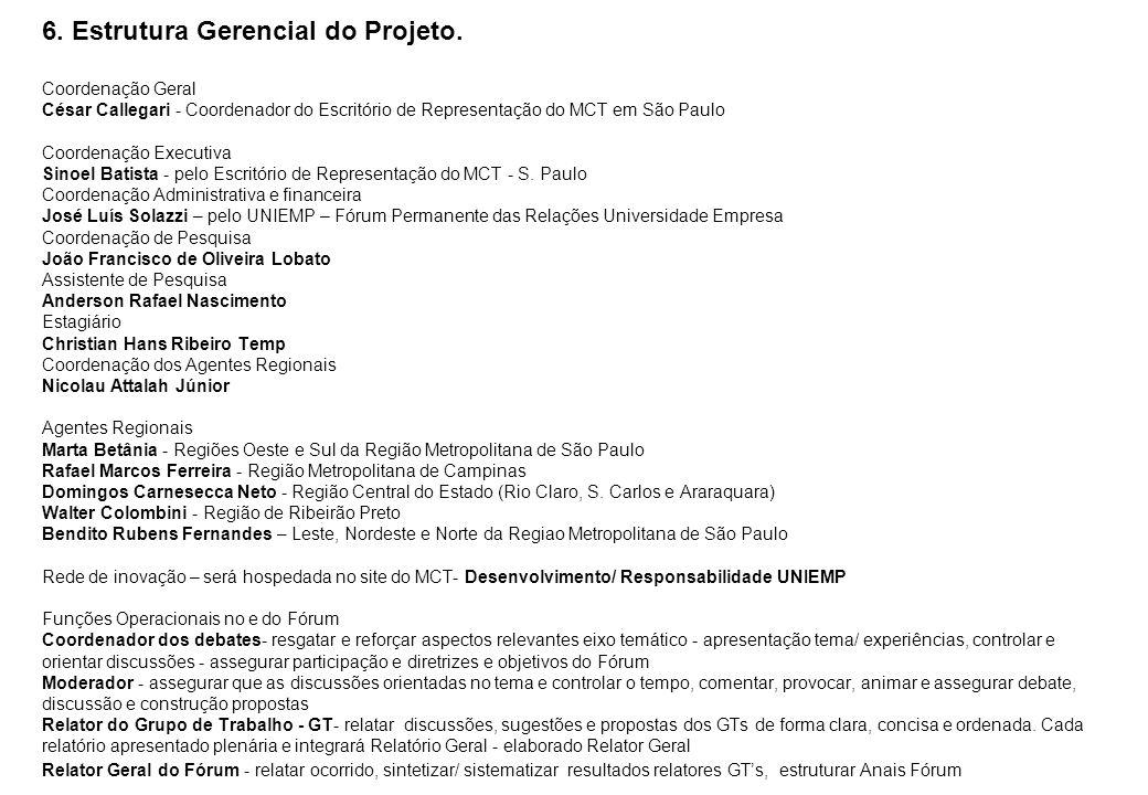 6. Estrutura Gerencial do Projeto. Coordenação Geral César Callegari - Coordenador do Escritório de Representação do MCT em São Paulo Coordenação Exec