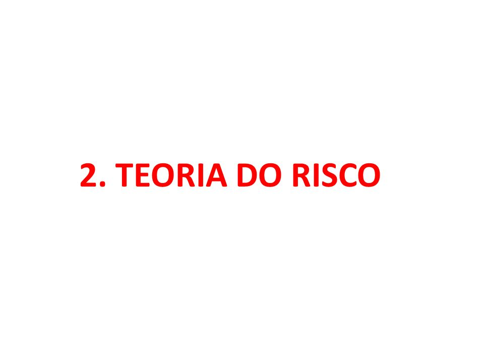 2. TEORIA DO RISCO