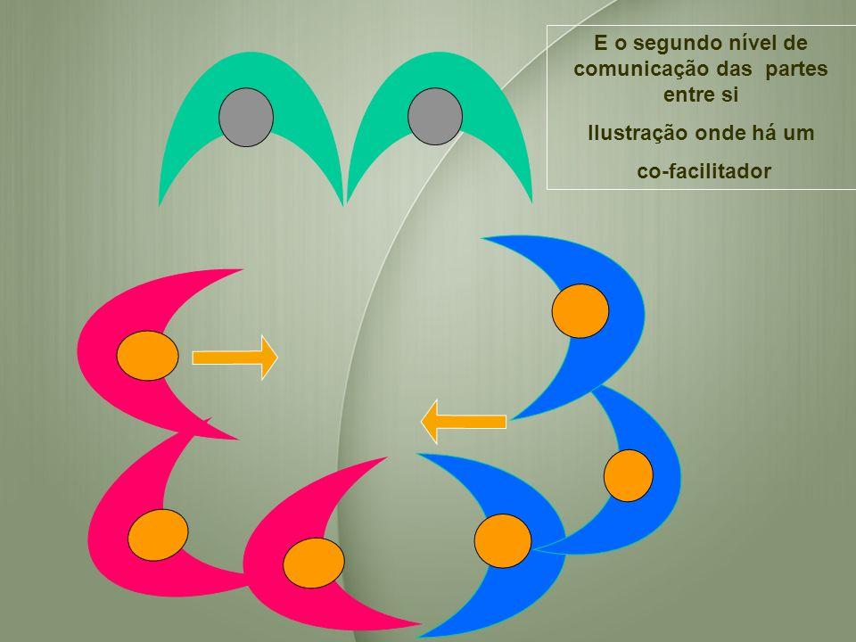 E o segundo nível de comunicação das partes entre si Ilustração onde há um co-facilitador