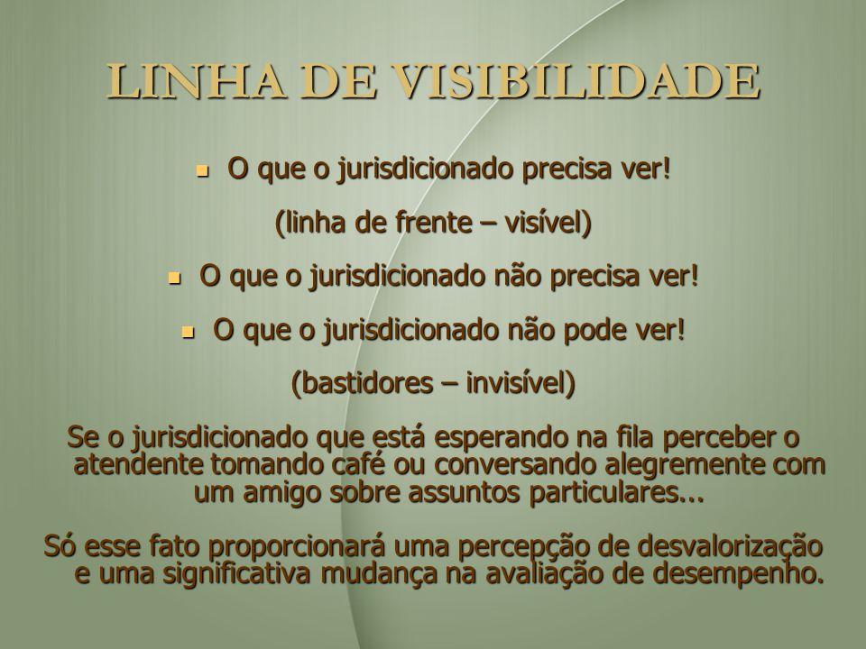LINHA DE VISIBILIDADE O que o jurisdicionado precisa ver! O que o jurisdicionado precisa ver! (linha de frente – visível) O que o jurisdicionado não p