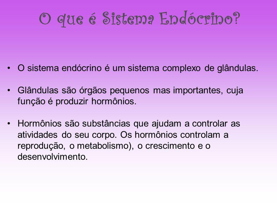 O que é Sistema Endócrino? O sistema endócrino é um sistema complexo de glândulas. Glândulas são órgãos pequenos mas importantes, cuja função é produz