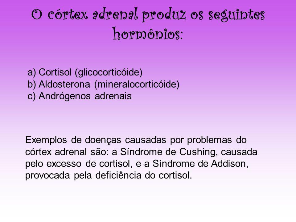 O córtex adrenal produz os seguintes hormônios: a)Cortisol (glicocorticóide) b)Aldosterona (mineralocorticóide) c)Andrógenos adrenais Exemplos de doen