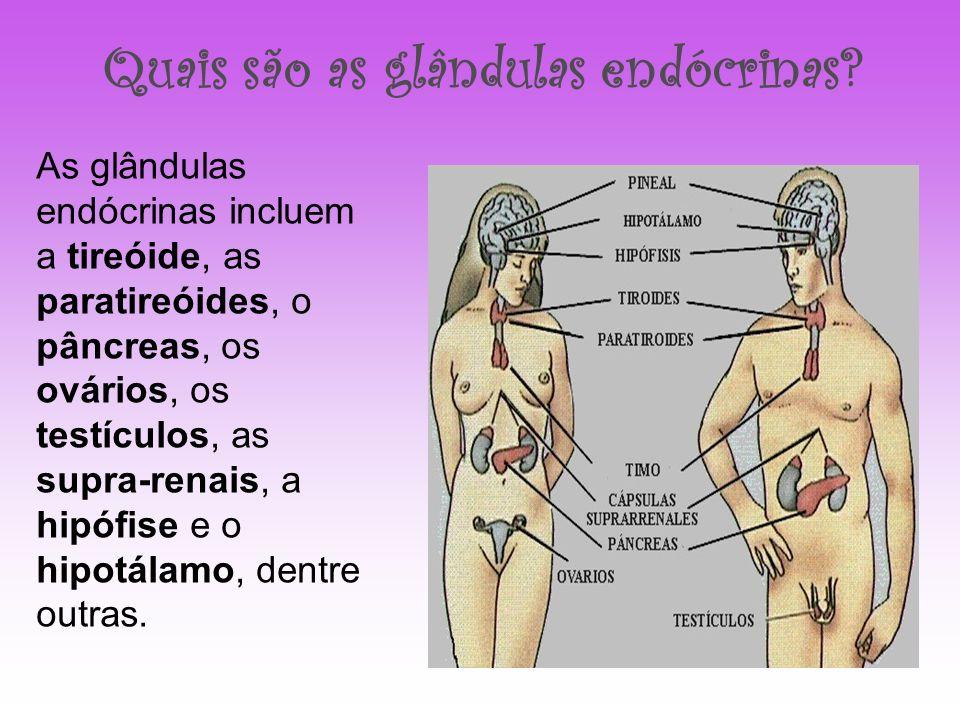Quais são as glândulas endócrinas? As glândulas endócrinas incluem a tireóide, as paratireóides, o pâncreas, os ovários, os testículos, as supra-renai
