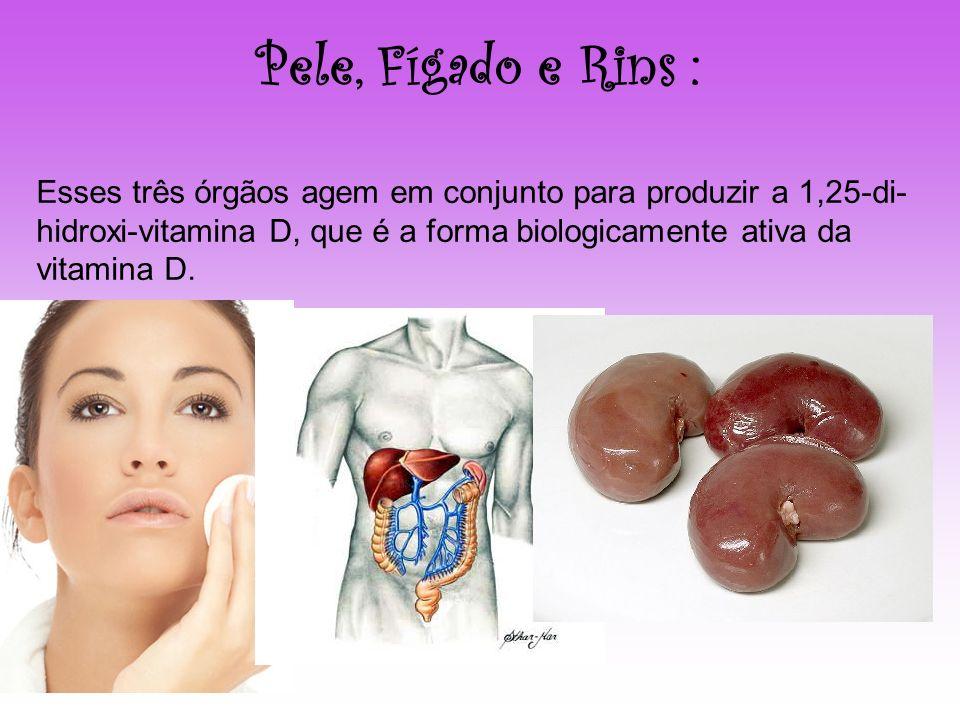 Pele, Fígado e Rins : Esses três órgãos agem em conjunto para produzir a 1,25-di- hidroxi-vitamina D, que é a forma biologicamente ativa da vitamina D