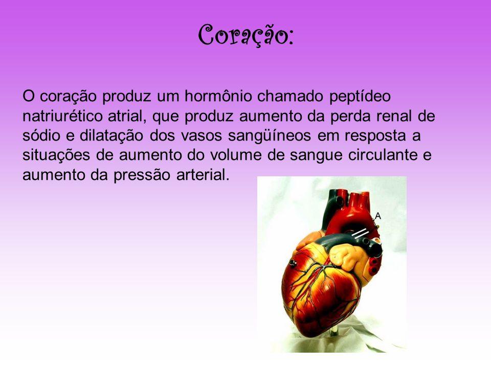 Coração: O coração produz um hormônio chamado peptídeo natriurético atrial, que produz aumento da perda renal de sódio e dilatação dos vasos sangüíneo