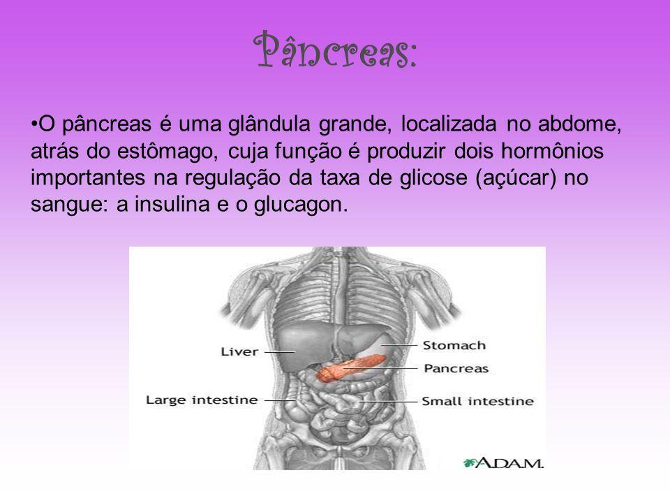 Pâncreas: O pâncreas é uma glândula grande, localizada no abdome, atrás do estômago, cuja função é produzir dois hormônios importantes na regulação da