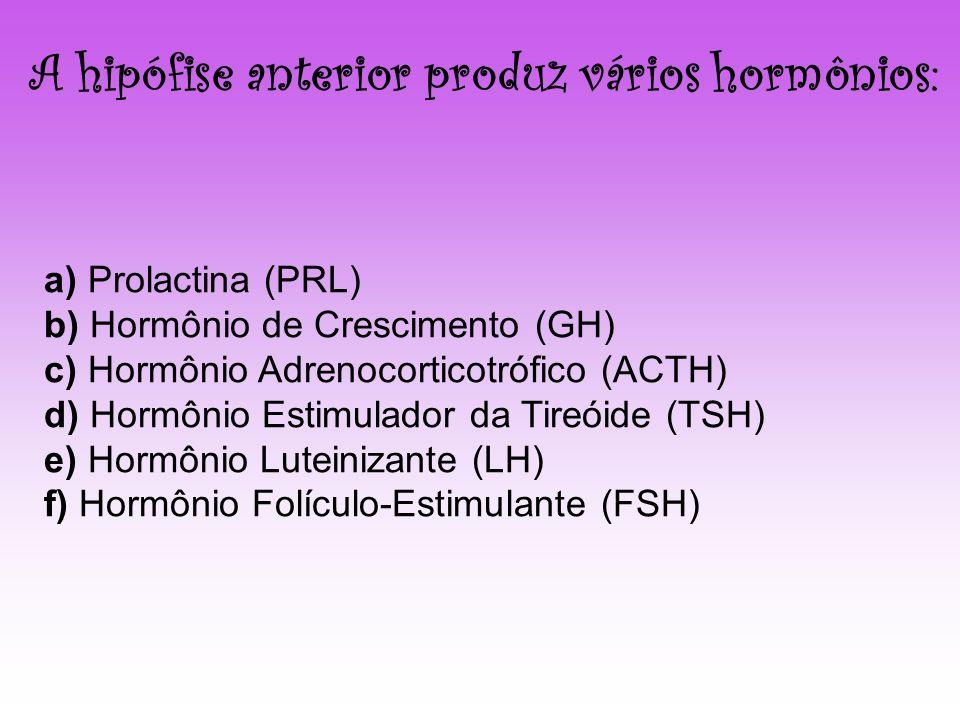 a) Prolactina (PRL) b) Hormônio de Crescimento (GH) c) Hormônio Adrenocorticotrófico (ACTH) d) Hormônio Estimulador da Tireóide (TSH) e) Hormônio Lute