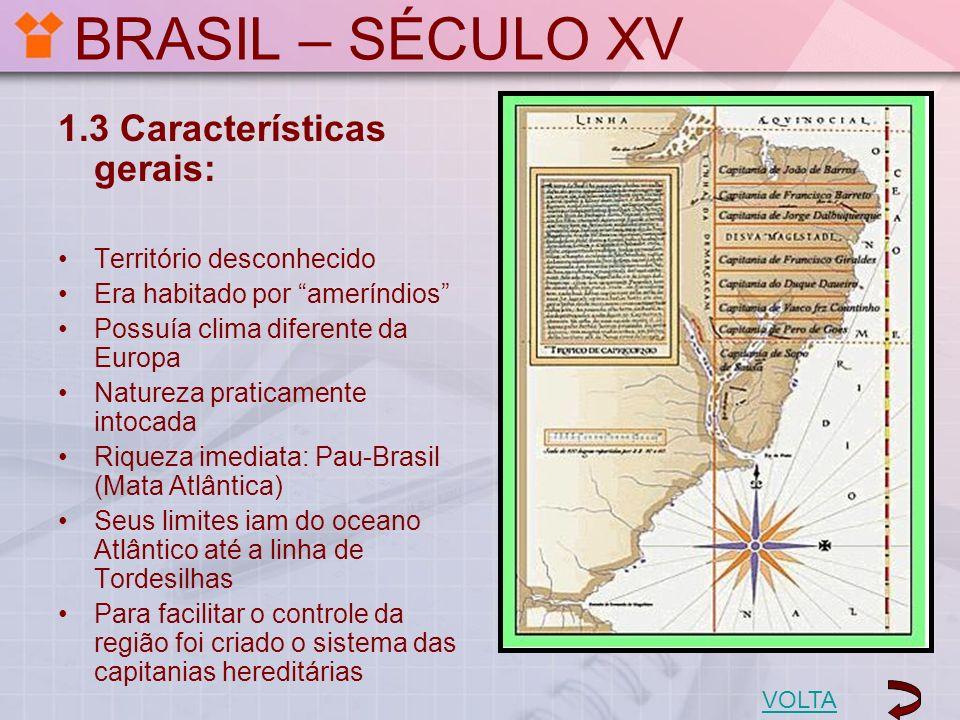 BRASIL – SÉCULO XV 1.3 Características gerais: Território desconhecido Era habitado por ameríndios Possuía clima diferente da Europa Natureza praticam