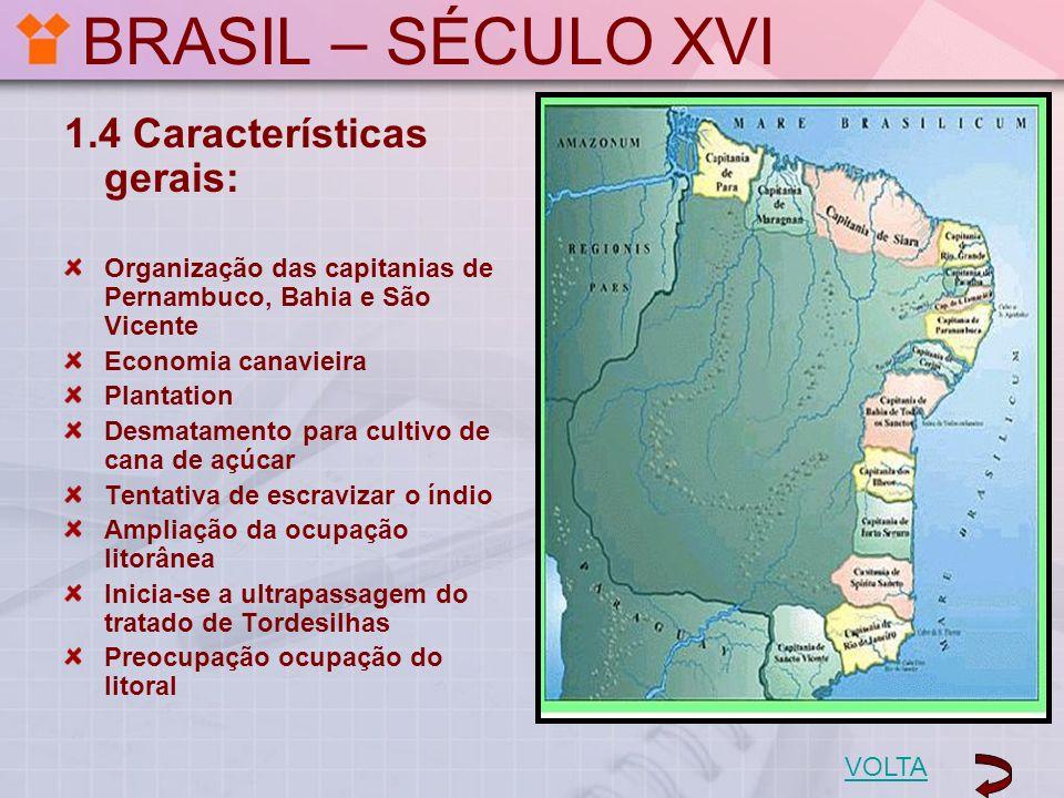BRASIL – SÉCULO XVI 1.4 Características gerais: Organização das capitanias de Pernambuco, Bahia e São Vicente Economia canavieira Plantation Desmatame