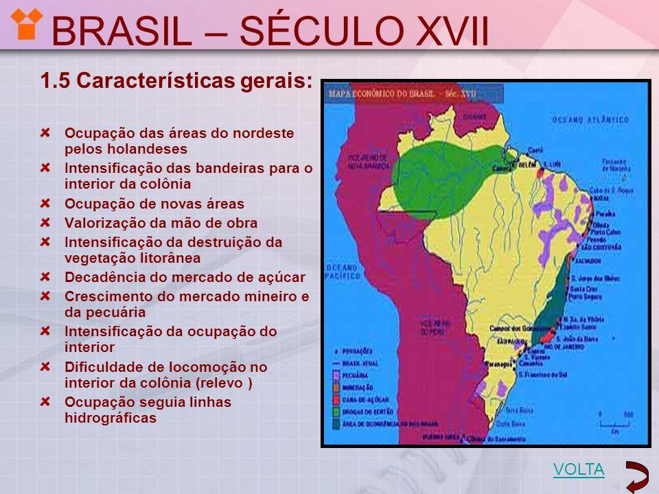 BRASIL – SÉCULO XVII 1.5 Características gerais: Ocupação das áreas do nordeste pelos holandeses Intensificação das bandeiras para o interior da colôn