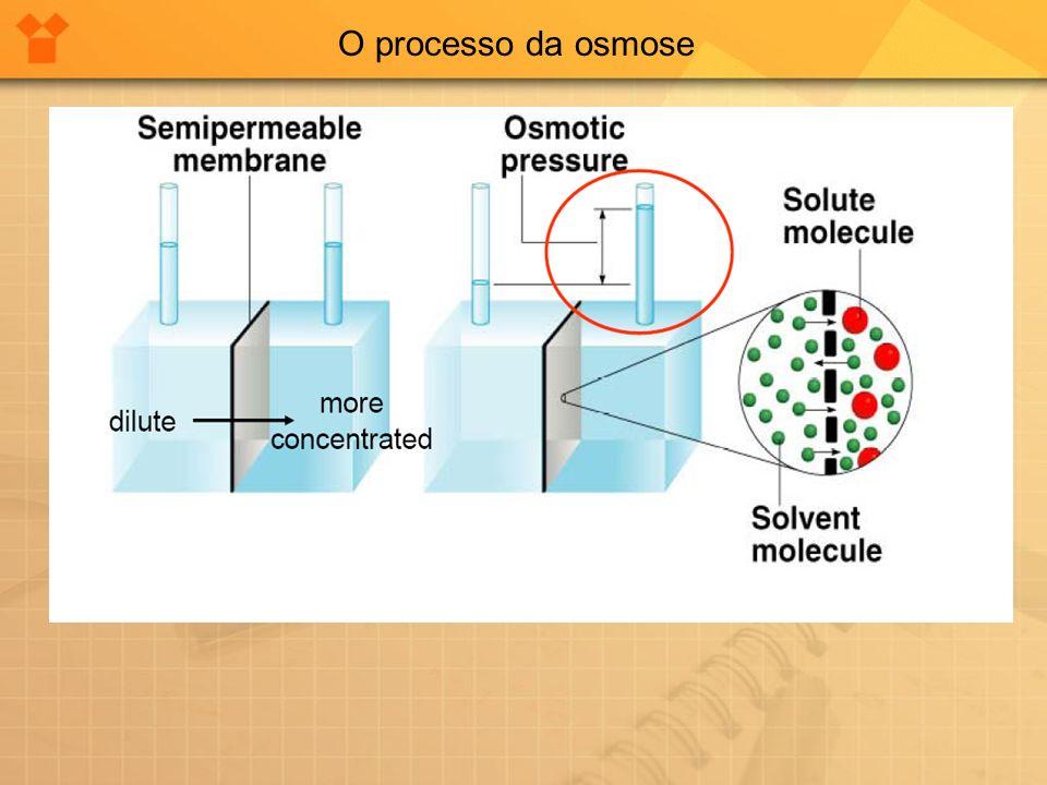 Osmose é a passagem seletiva de moléculas de solvente, através de uma membrana porosa, de uma solução diluída para uma mais concentrada. Uma membrana