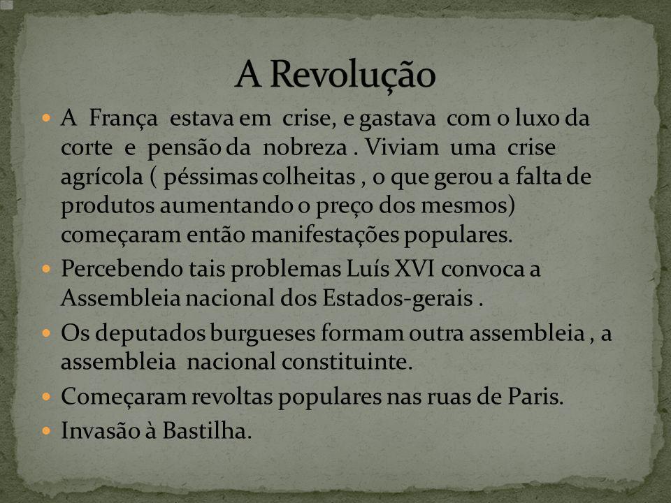 A França estava em crise, e gastava com o luxo da corte e pensão da nobreza. Viviam uma crise agrícola ( péssimas colheitas, o que gerou a falta de pr