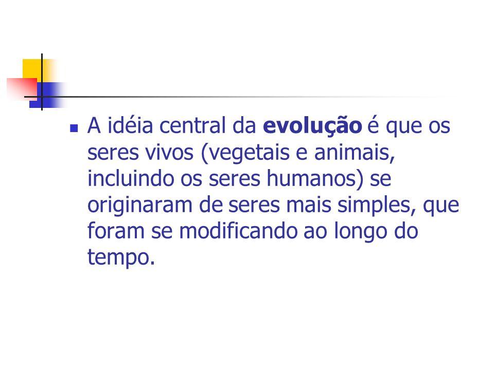 A idéia central da evolução é que os seres vivos (vegetais e animais, incluindo os seres humanos) se originaram de seres mais simples, que foram se modificando ao longo do tempo.