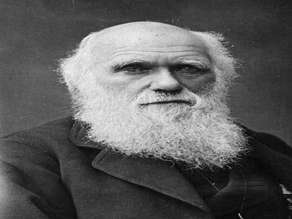 Em sua obra; A origem das espécies, ele defendeu a tese de que os seres vivos evoluíram de um ancestral em comum.