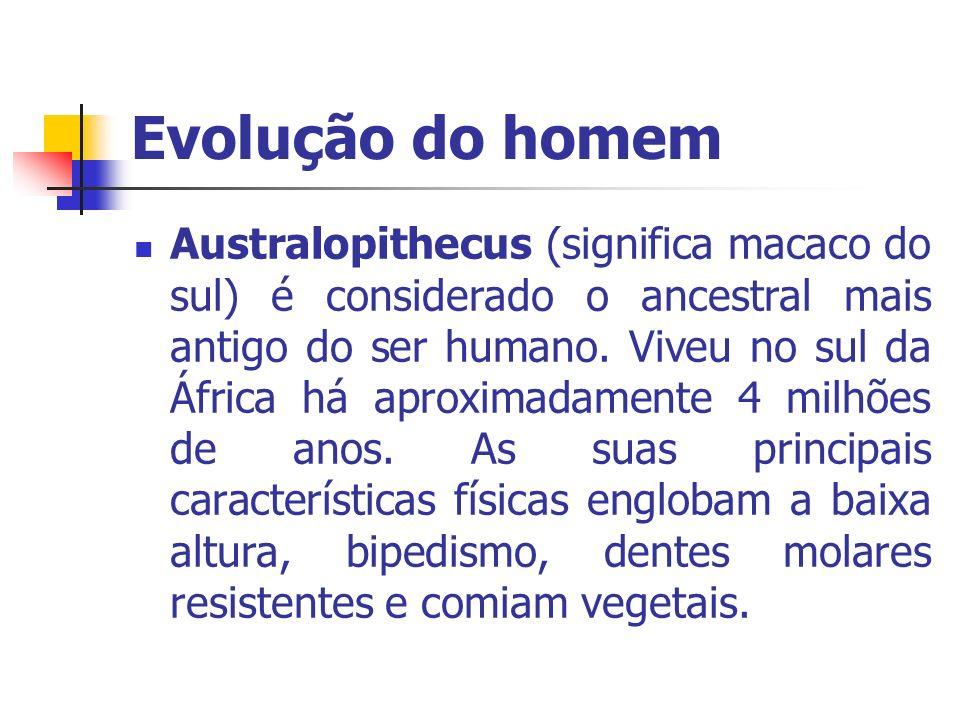 Evolução do homem Australopithecus (significa macaco do sul) é considerado o ancestral mais antigo do ser humano. Viveu no sul da África há aproximada