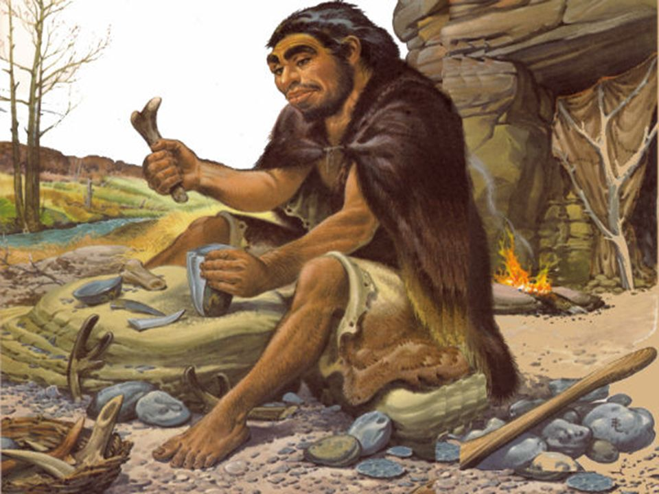 Homo sapiens(homem sábio) O homem de Cro-magnon, ficou conhecido como o de homem Cro- Magnon, pois seus primeiros indícios foram encontrados na caverna de Cro- Magnon, na França.