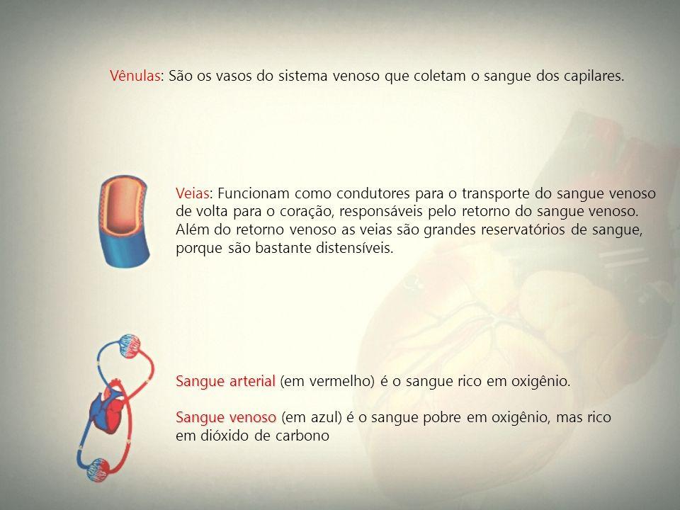 Vênulas: São os vasos do sistema venoso que coletam o sangue dos capilares. Veias: Funcionam como condutores para o transporte do sangue venoso de vol