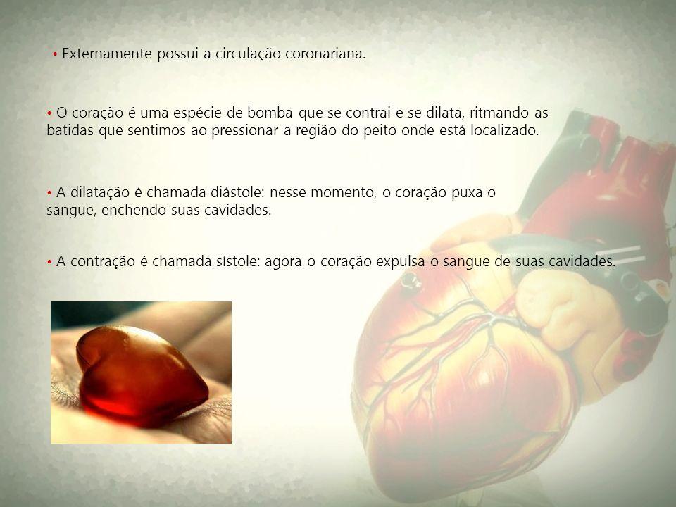 O coração é uma espécie de bomba que se contrai e se dilata, ritmando as batidas que sentimos ao pressionar a região do peito onde está localizado. A