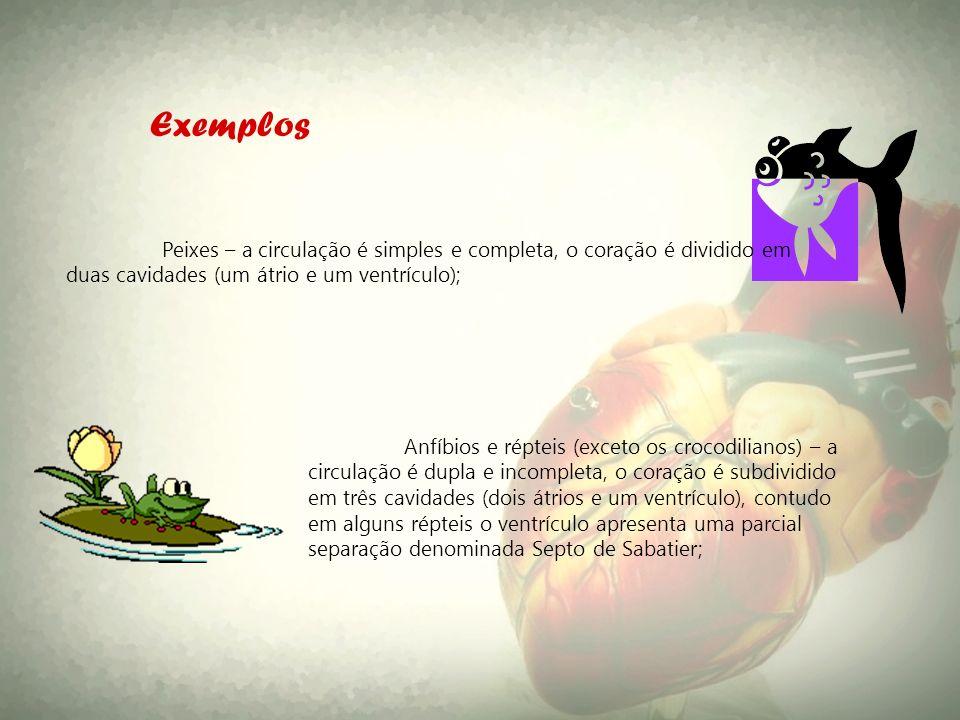 Peixes – a circulação é simples e completa, o coração é dividido em duas cavidades (um átrio e um ventrículo); Exemplos Anfíbios e répteis (exceto os