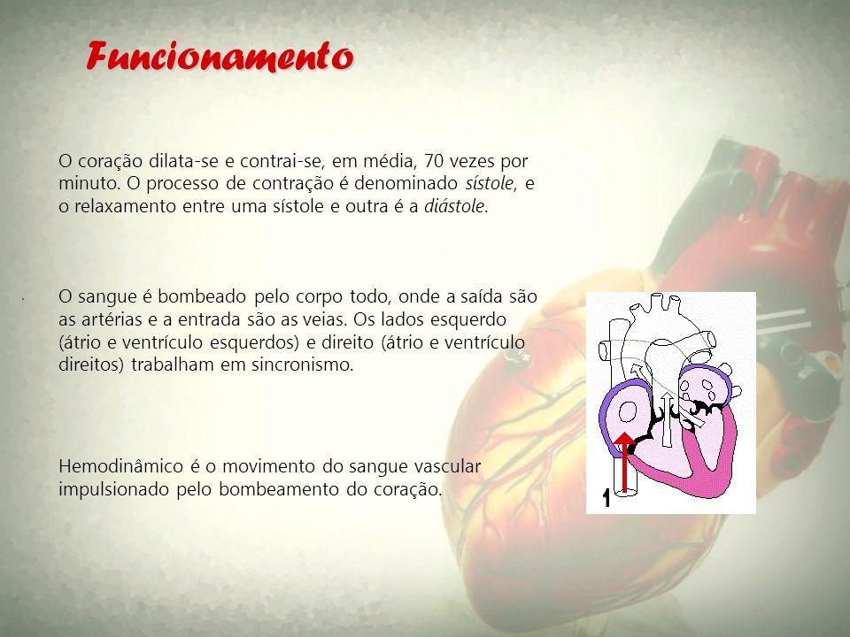 . Funcionamento O coração dilata-se e contrai-se, em média, 70 vezes por minuto. O processo de contração é denominado sístole, e o relaxamento entre u