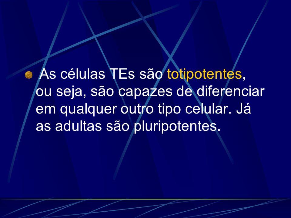 As células TEs são totipotentes, ou seja, são capazes de diferenciar em qualquer outro tipo celular. Já as adultas são pluripotentes.