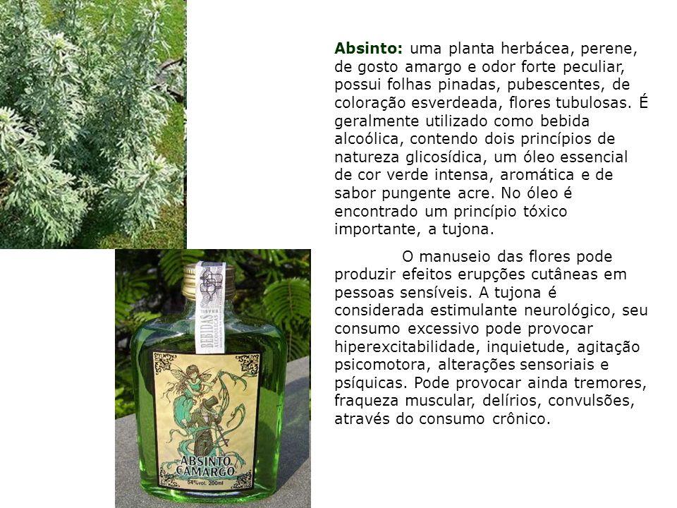 Absinto: uma planta herbácea, perene, de gosto amargo e odor forte peculiar, possui folhas pinadas, pubescentes, de coloração esverdeada, flores tubul