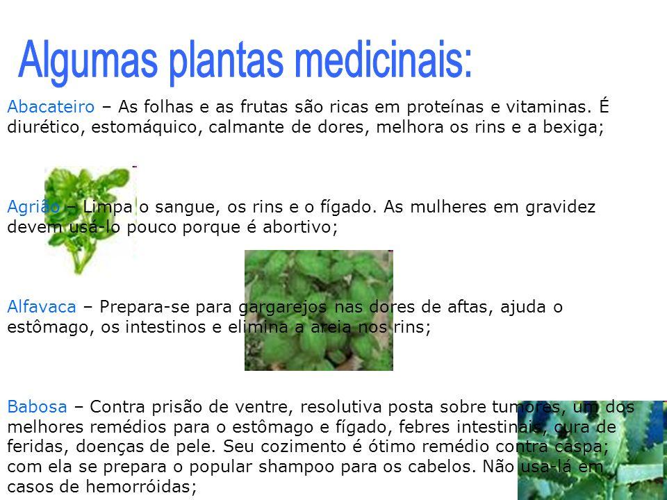 Abacateiro – As folhas e as frutas são ricas em proteínas e vitaminas. É diurético, estomáquico, calmante de dores, melhora os rins e a bexiga; Agrião