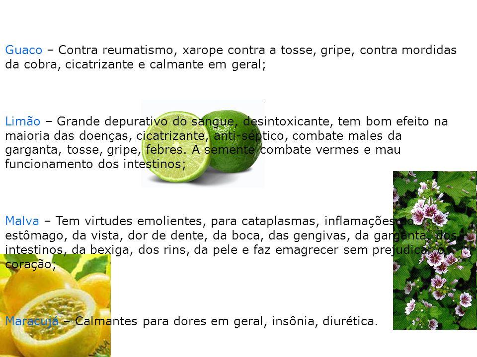 Guaco – Contra reumatismo, xarope contra a tosse, gripe, contra mordidas da cobra, cicatrizante e calmante em geral; Limão – Grande depurativo do sang