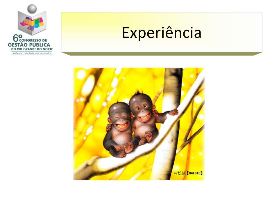 Experiência