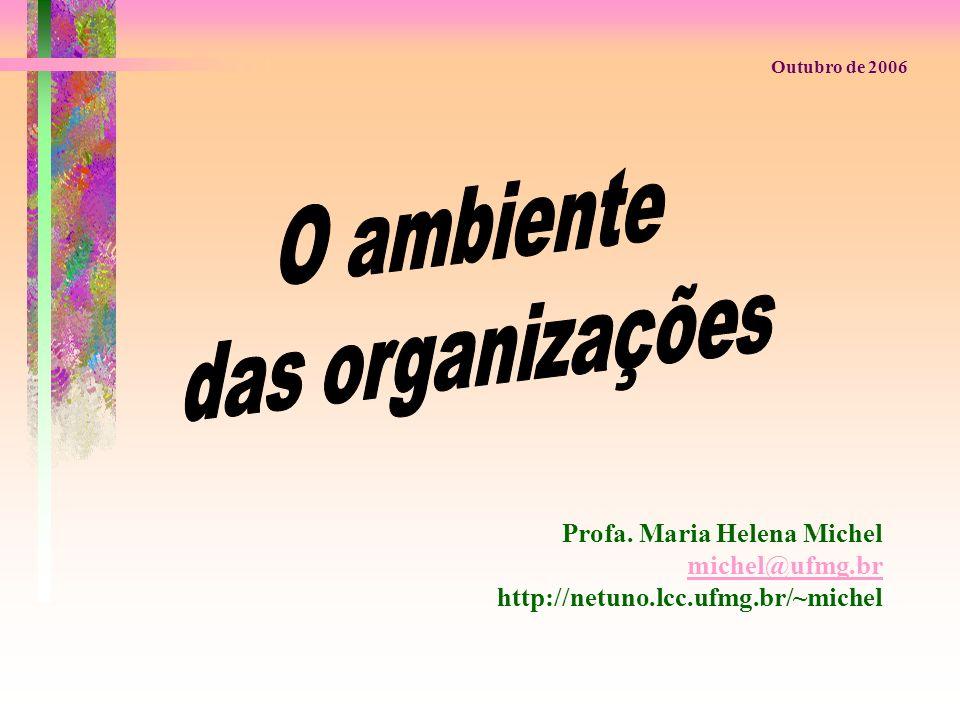 Profa. Maria Helena Michel michel@ufmg.br http://netuno.lcc.ufmg.br/~michel Outubro de 2006