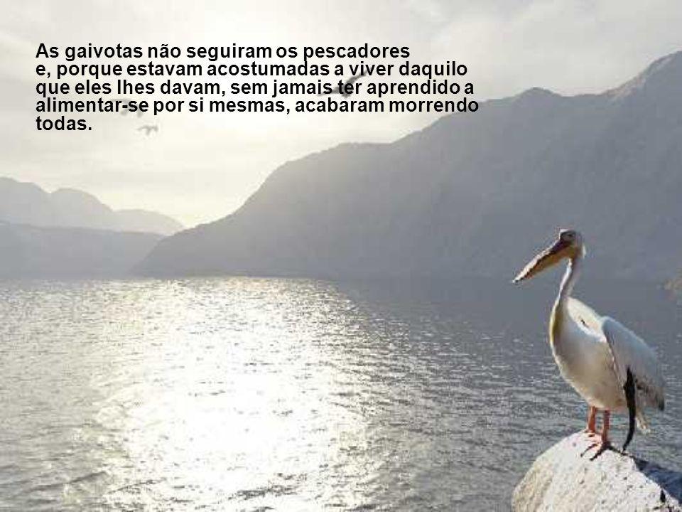 Conta-se a história de uma pequena aldeia de pescadores onde, por muitos anos, um bando de gaivotas se alimentava das sobras que os pescadores deixava