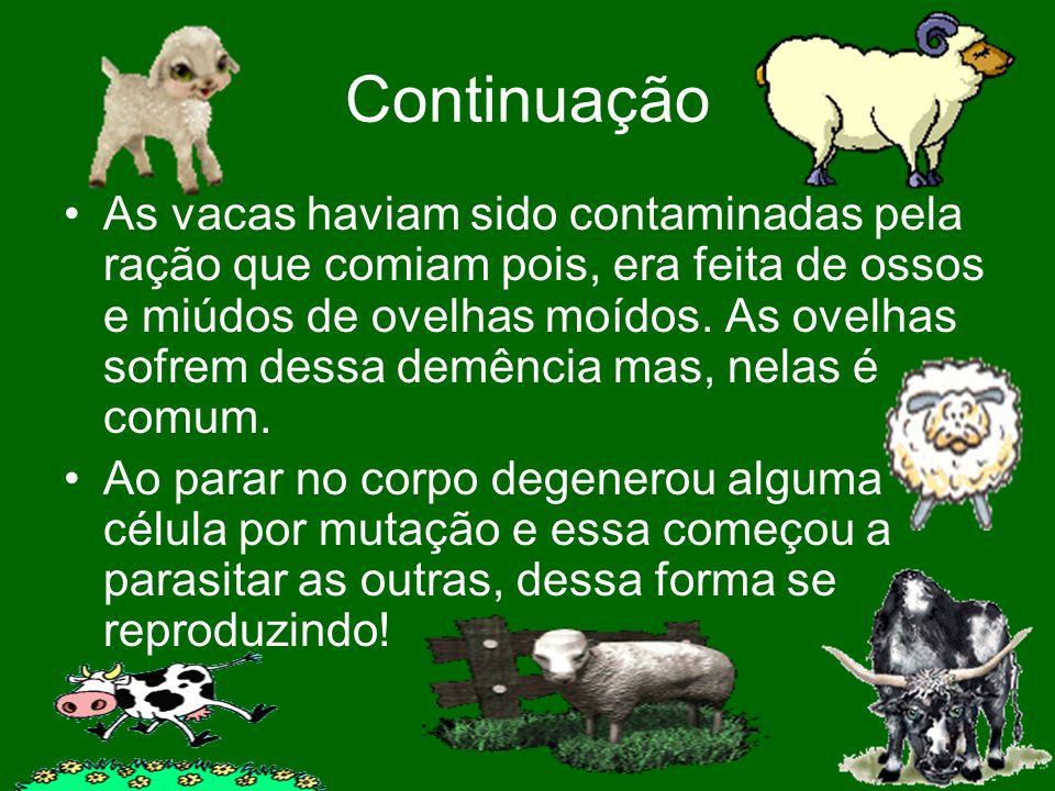 Continuação As vacas haviam sido contaminadas pela ração que comiam pois, era feita de ossos e miúdos de ovelhas moídos. As ovelhas sofrem dessa demên
